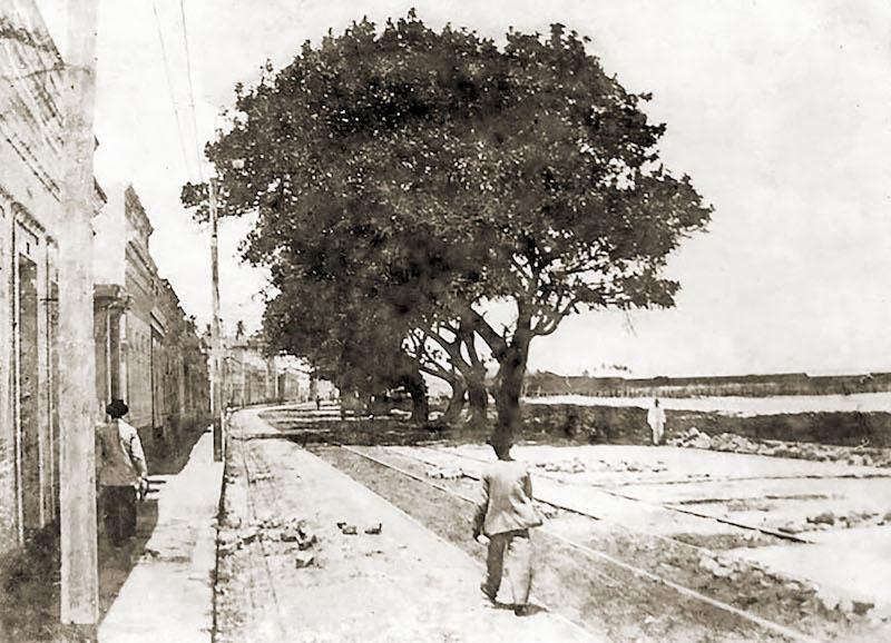 Av-da-Paz-no-início-do-século-XX-2
